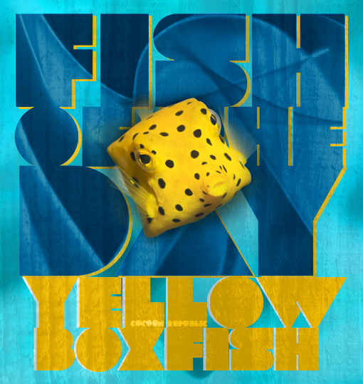 Fish Of The Day ›Yellow Boxfish‹ © cocoon republic