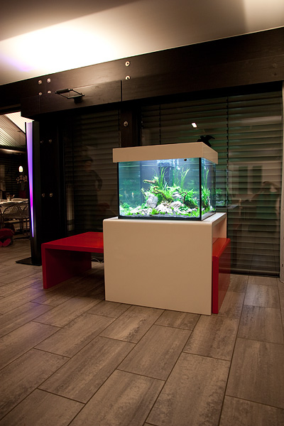 Aquarium Design Möbel // Aquascaping
